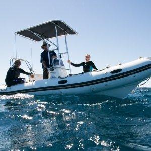 whaleshark tours expert team