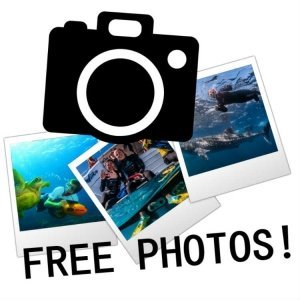 Free Photos Image
