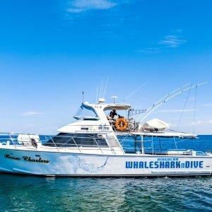 Ningaloo Whaleshark Tours N Dive Crusie